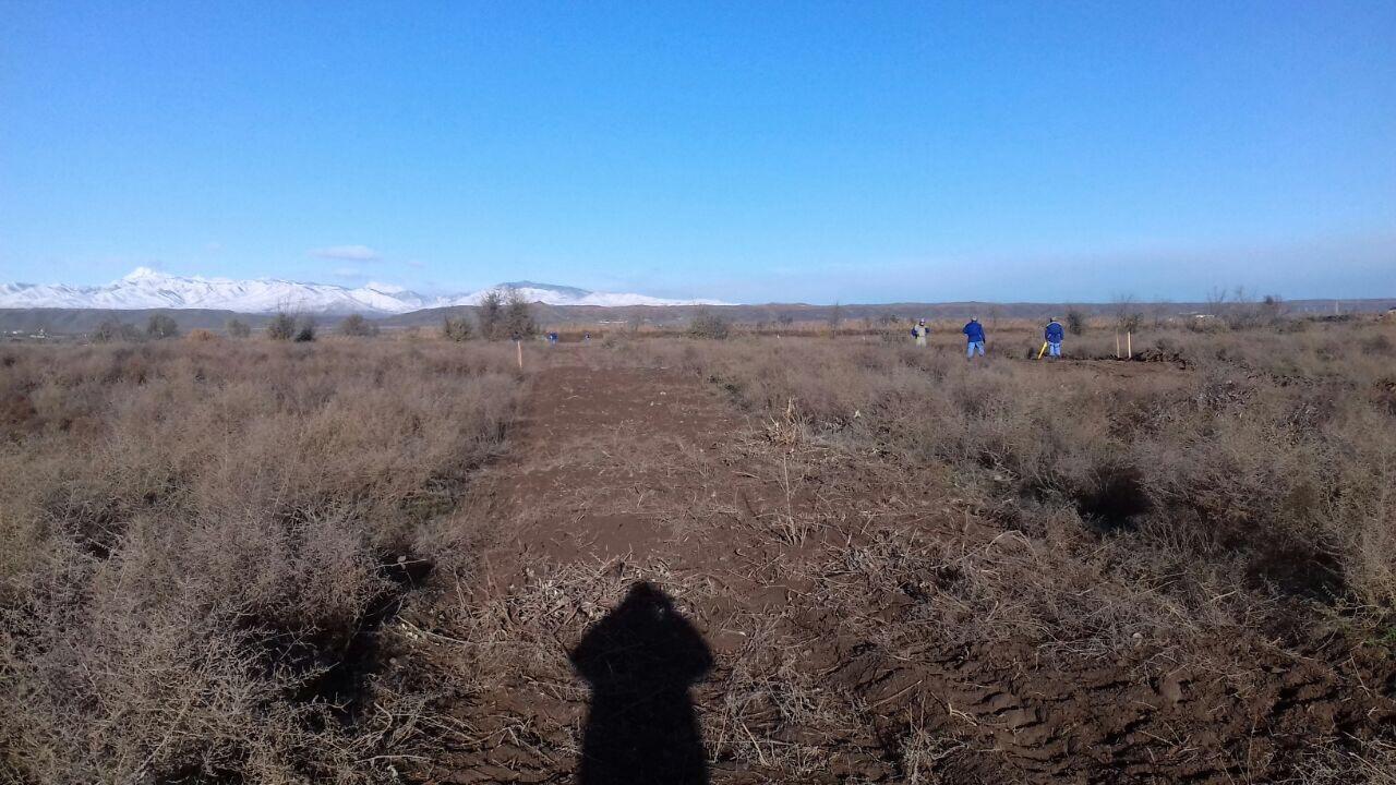 В Джоджуг Марджанлы полностью очищена территория площадью 25100 кв.м (ФОТО) - Gallery Image