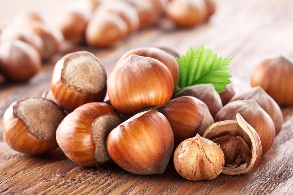 Azerbaijan exports hazelnuts to Lebanon for first time