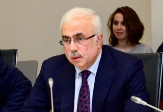 Azerbaijan to reduce dependence on import of raw materials for carpet weaving (PHOTO)