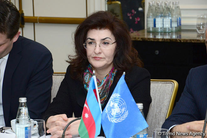"""Baku Principles"" to be developed as part of UN Sustainable Development Goals (PHOTO)"
