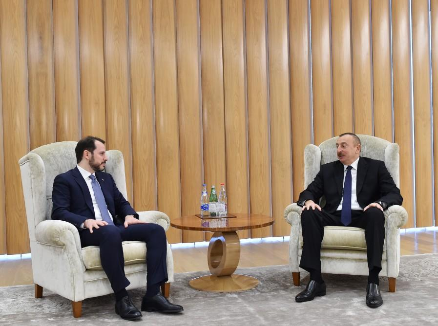 President Aliyev receives Turkish energy minister