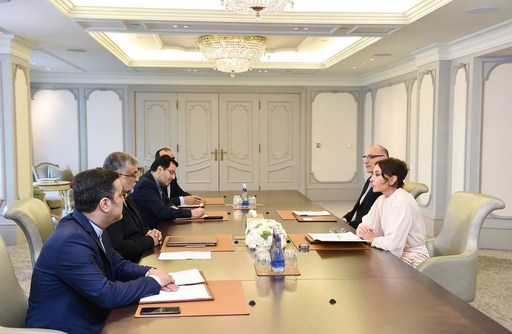 First VP Mehriban Aliyeva meets head of Iran's Islamic Culture and Relations Organization (PHOTO)