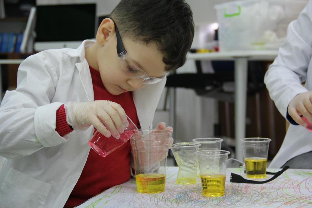 Uşaqlar üçün növbəti ekoloji laboratoriya təlimi təşkil olunub (FOTO) - Gallery Image