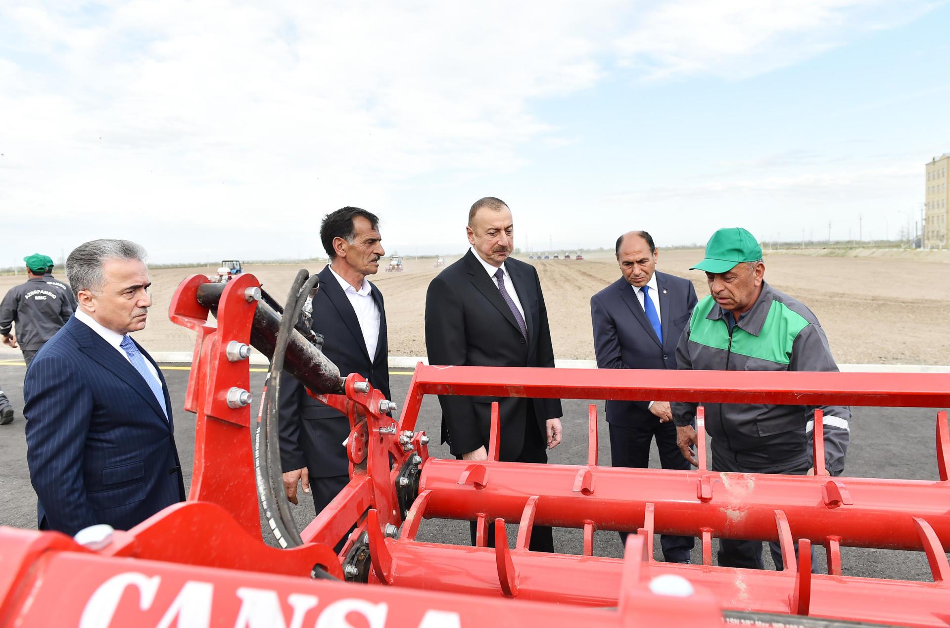 Президент Ильхам Алиев ознакомился с хлопковым полем в Бардинском районе - Gallery Image