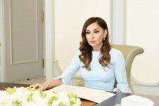 Первый вице-президент Мехрибан Алиева встретилась с заместителем президента Ирана по вопросам женщин и семьи (ФОТО) - Gallery Thumbnail
