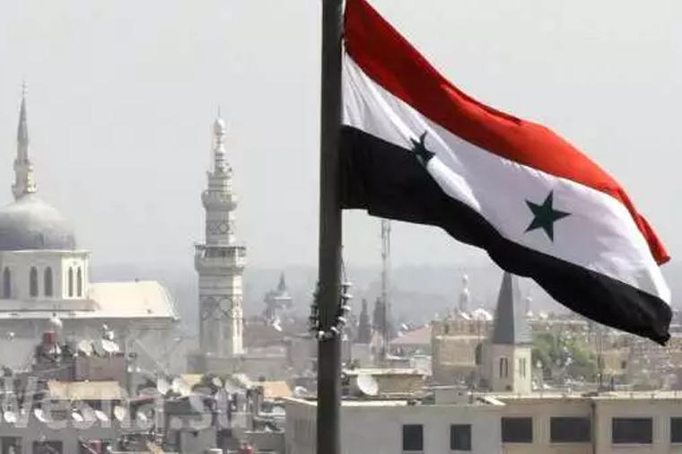 Syrian Constitutional Committee to hold next meeting on Nov 25