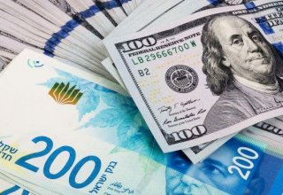 Shekel loses ground despite dollar weakness