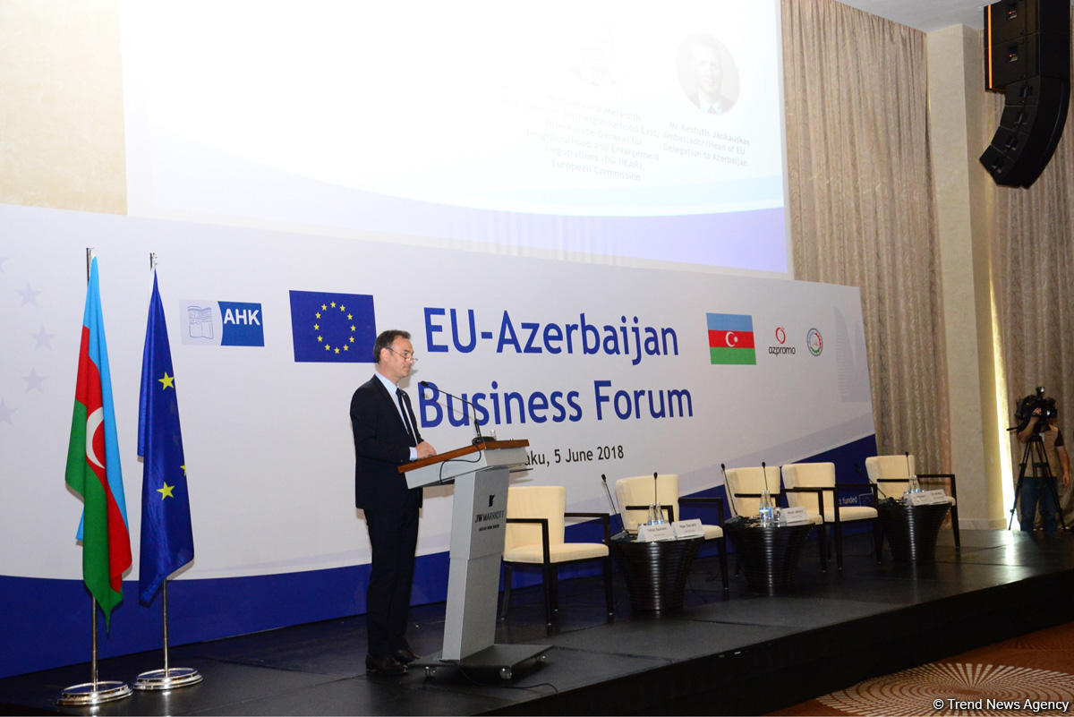 EU investments in Azerbaijan exceed $15 billion over past 5 years - Deputy Minister (PHOTO) - Gallery Image