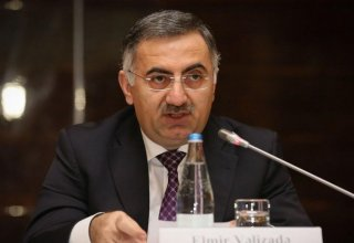 Azerbaijan discusses introduction of electronic tax declaration system with GUAM countries