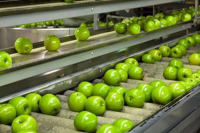 Turkmenistan to build new facility for processing its own agricultural products
