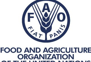 FAO foresees joint projects with Azerbaijan in new areas (Exclusive)