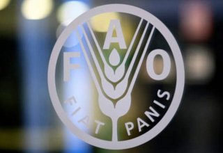 FAO to start developing agriculture in liberated Azerbaijani lands soon