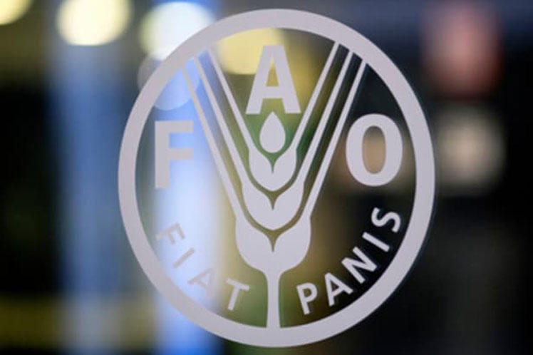 FAO to launch smart farming project in Uzbekistan