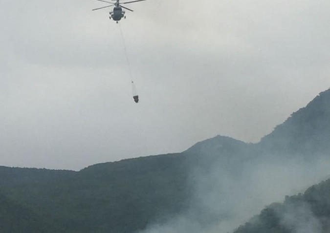 Work continues to extinguish fire in Azerbaijan's Altyaghach national park (PHOTO) - Gallery Image