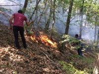 Work continues to extinguish fire in Azerbaijan's Altyaghach national park (PHOTO) - Gallery Thumbnail