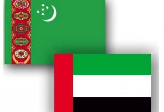 UAE's activity on Turkmenistan's exchange in November