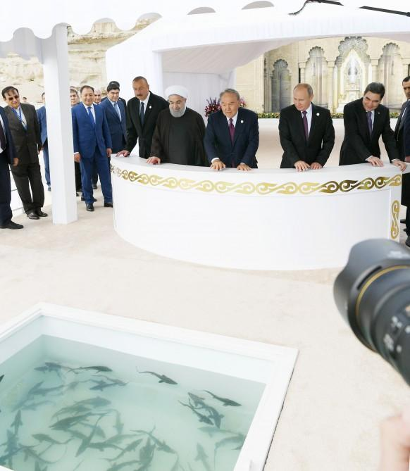 Heads of state attended ceremony to release sturgeons into Caspian Sea - Gallery Image