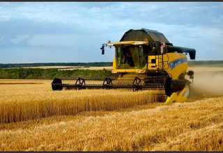 Turkmenistan's Dashoguz region completing preparations for wheat harvesting