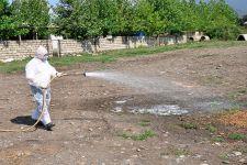 Qurbanlıq diri heyvan satışı aparılan yerlərdə dezinfeksiya işləri başa çatıb (FOTO) - Gallery Thumbnail