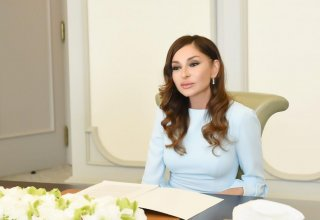 First Vice-President Mehriban Aliyeva congratulates national Greco-Roman wrestling team (PHOTO)