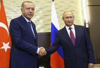Putin, Erdogan exchange views on Syrian settlement