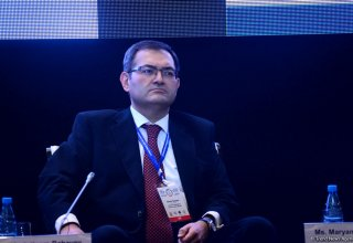 Azerbaijani youth play huge role in sustainable development: deputy minister