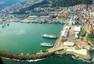Volumes of cargo transshipment from Algeria through Turkish ports revealed