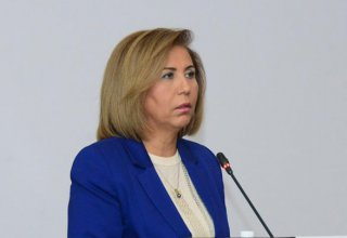 MP: OSCE PA final declaration secures Azerbaijan's interests
