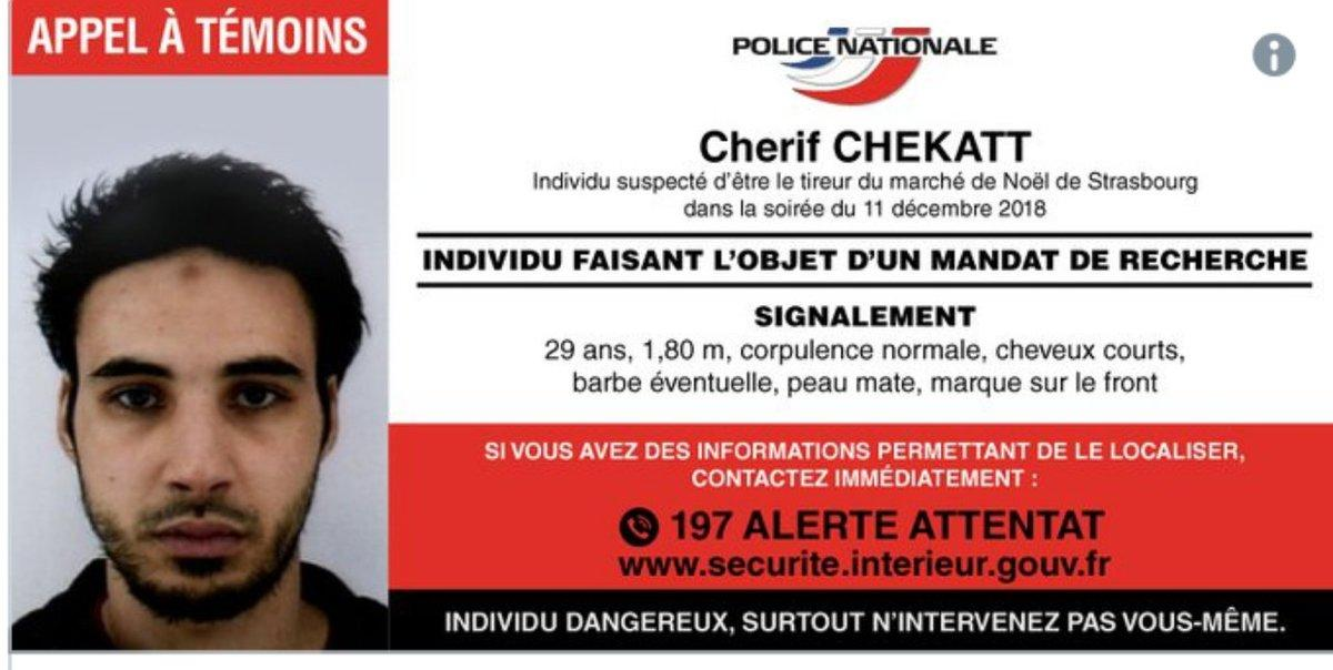 Shots Heard in Strasbourg District, Security Forces at the Scene - Reports