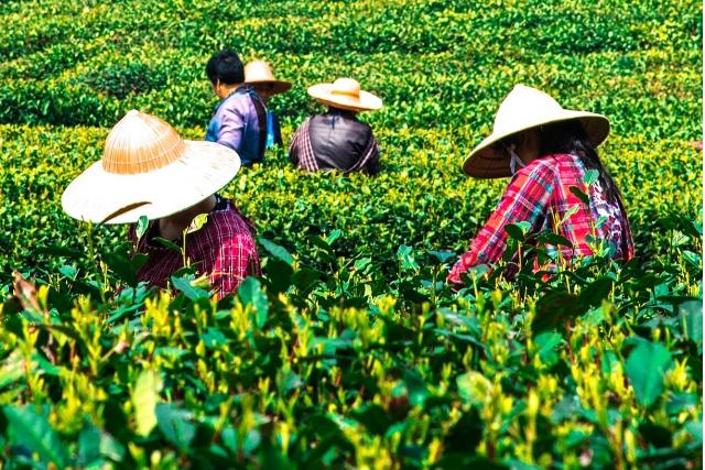 China launches green subsidies to spur investment in hinterland provinces