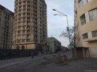 Bakıda güclü külək bir ağacı kökündən çıxardı, 15 ağacın budaqlarını sındırdı (FOTO) - Gallery Thumbnail