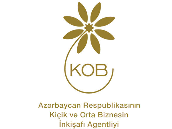 Azerbaijani agency to speed up provision of services to entrepreneurs