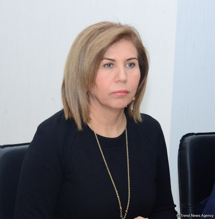 """Bahar Muradova: holding """"negotiations for sake of negotiations"""" does not contribute to resolution of Nagorno-Karabakh conflict"""