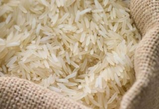 Turkmenistan signs decree on rice production