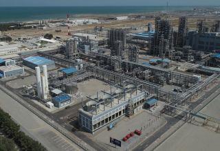SOCAR Polymer лидирует по экспорту в негосударственном секторе Азербайджана
