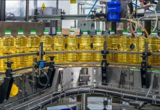 Volume of vegetable oil imported by Turkmenistan from EAEU revealed