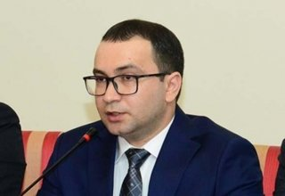 Top official: Radical groups oppose ideology of Azerbaijanism