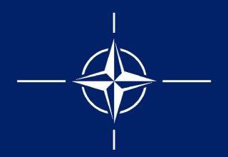 НАТО проведет первую в истории видеоконференцию начальников генштабов