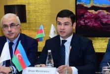 В Азербайджане удельный вес МСБ в занятости превысил 70% - замминистра (ФОТО) - Gallery Thumbnail