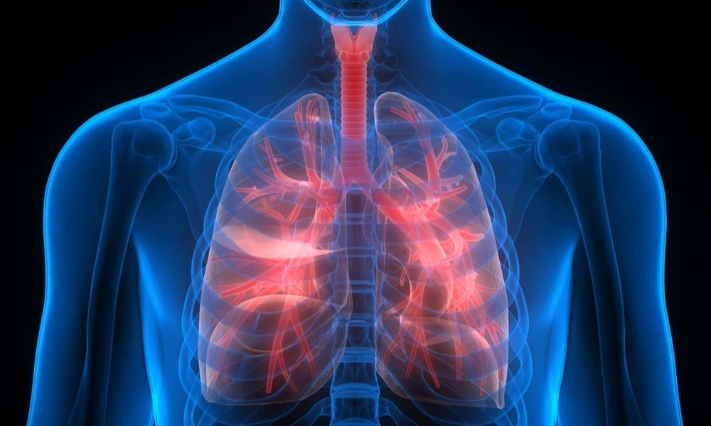 Scientists find new way to regenerate severely damaged lungs for transplant