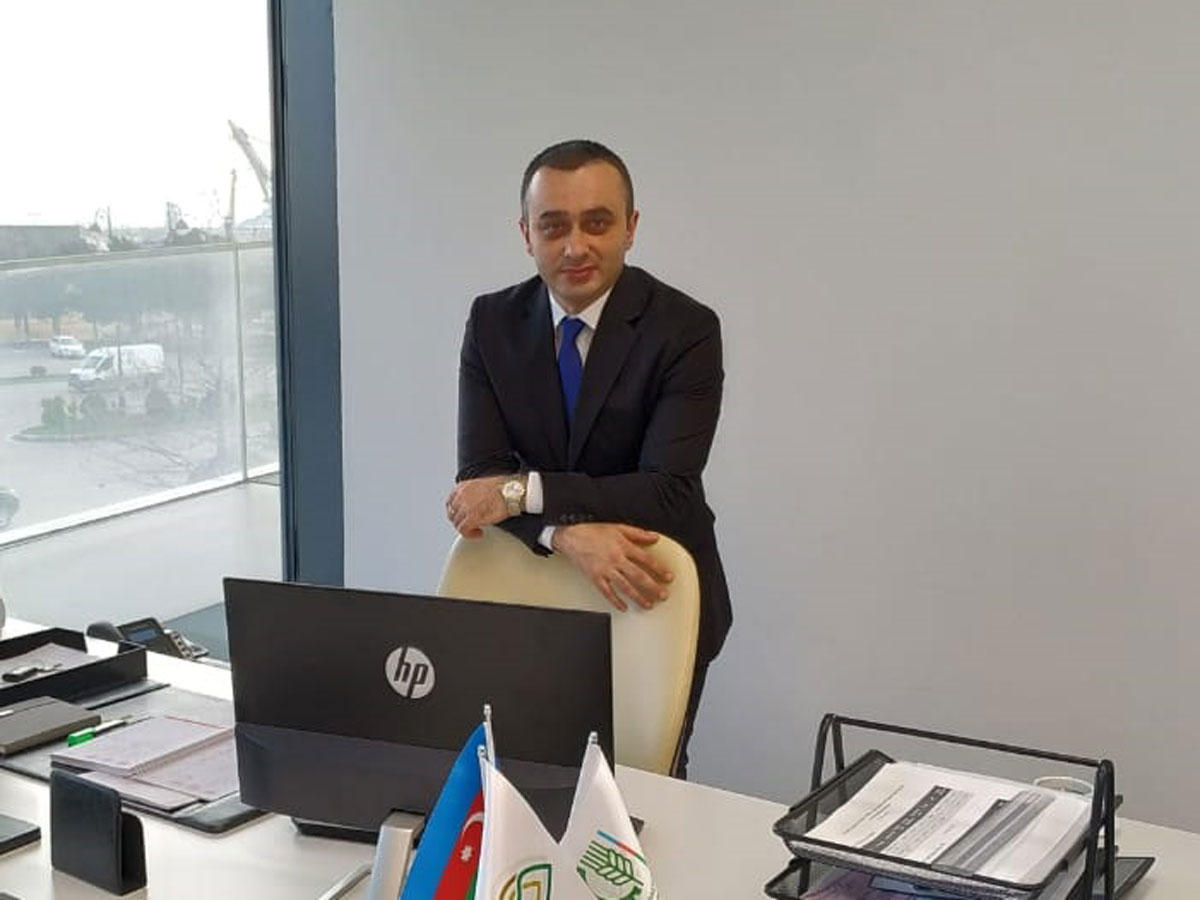Azerbaijan to begin production of seeds resistant to viruses, drought, diseases (Interview)