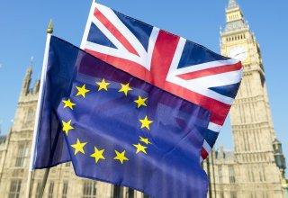 Британия представила позицию по торговому соглашению с ЕС после Brexit