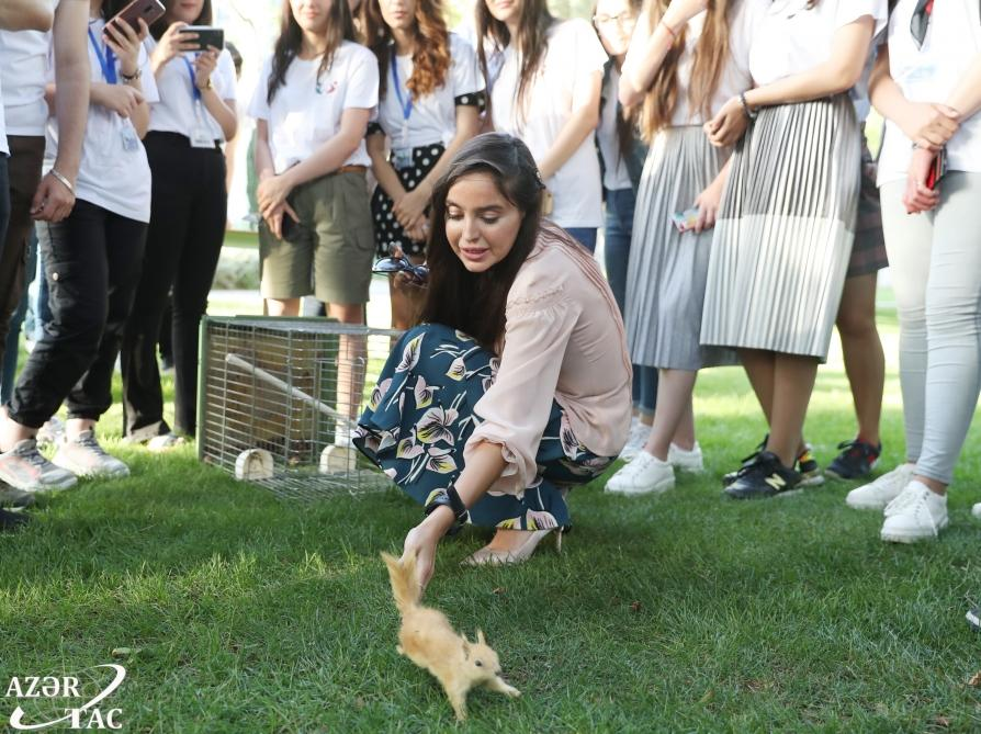 Urban Ecology Project continues successfully in Baku (PHOTO)