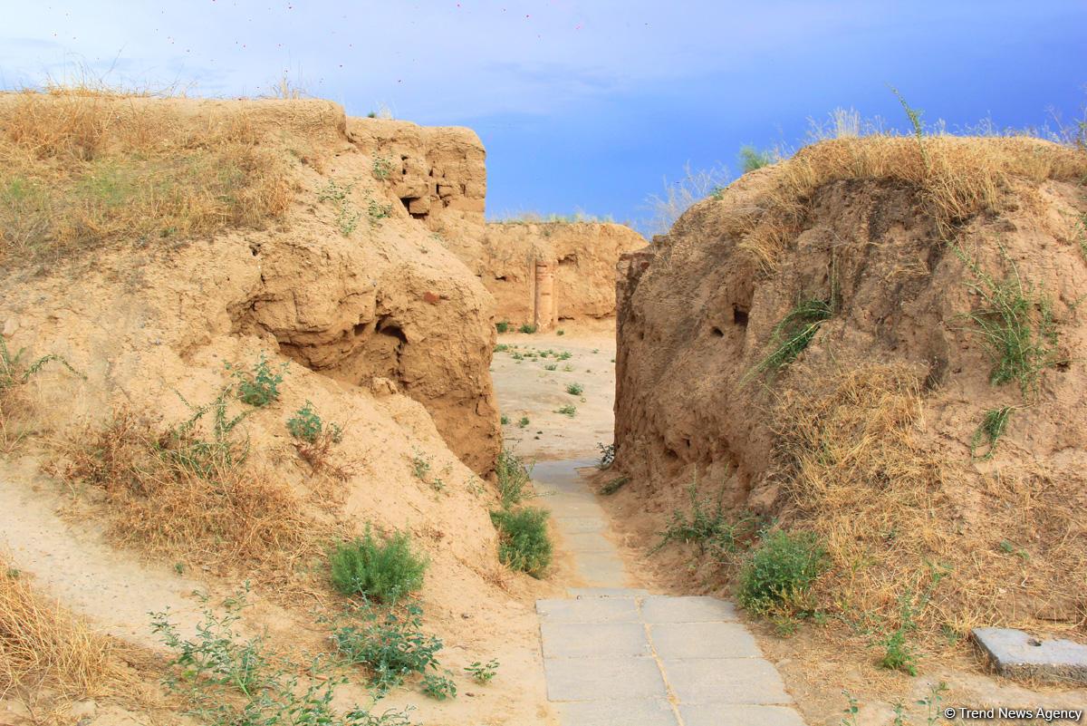 Азербайджанец в Туркменистане – Древняя Ниса, Ахалтекинские красавцы, удивительные экспонаты (ФОТО) - Gallery Image