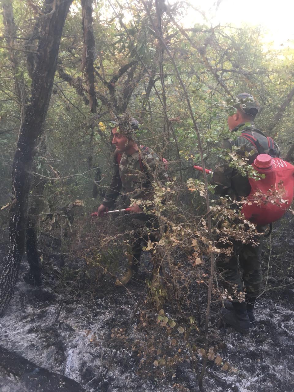 В Агсу начался пожар в горной местности, к тушению огня привлечены вертолеты (ФОТО, ВИДЕО) - Gallery Image