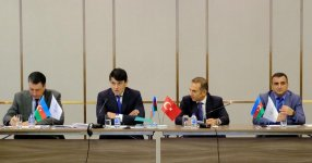 Turkey holds first meeting of Coordinating Councils of Azerbaijanis living abroad (PHOTO) - Gallery Thumbnail
