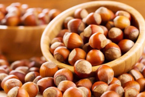 Azerbaijan's companies strike deal to export hazelnuts to Italy