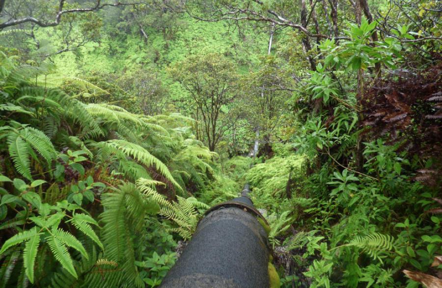 Colombia's Trasandino pipeline damaged in bombing
