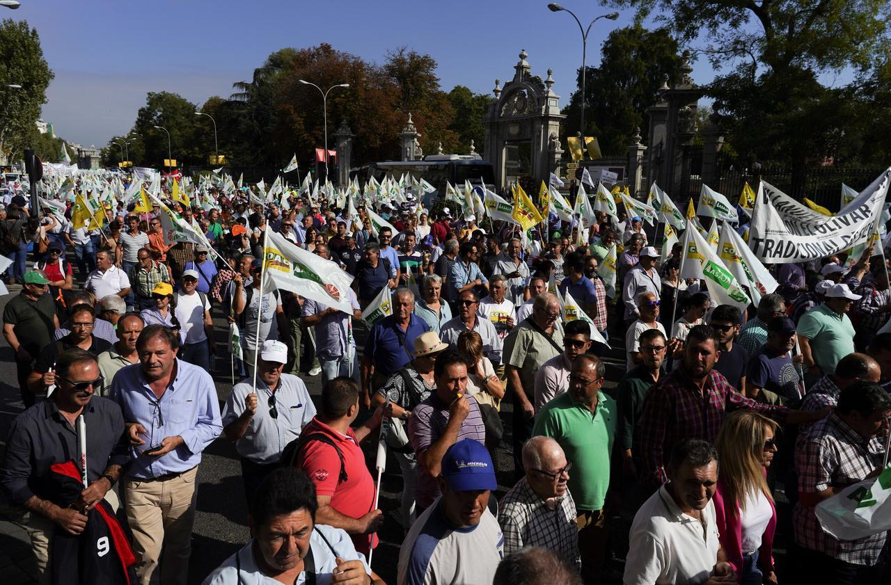 Thousands of olive producers march in Madrid against U.S. tariffs