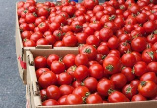 Russia warns Armenia about ban on import of tomatoes